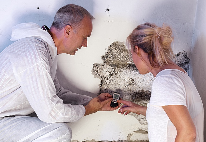 moisture and mold